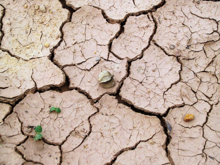 drought-cracked-earth